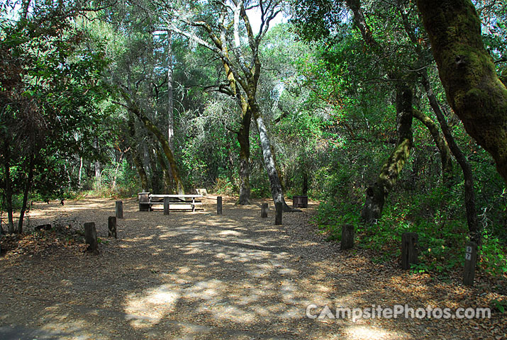 Henry Cowell 097