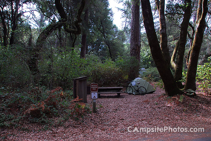 Henry Cowell Bike Campsite