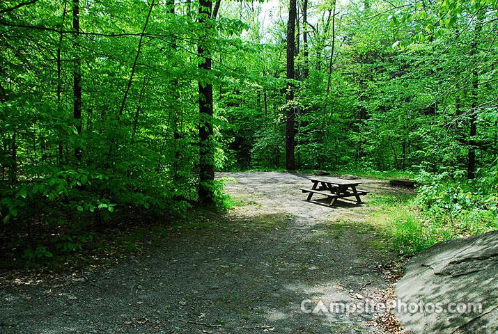 Little Pond - Campsite Photos, Camp Info & Reservations