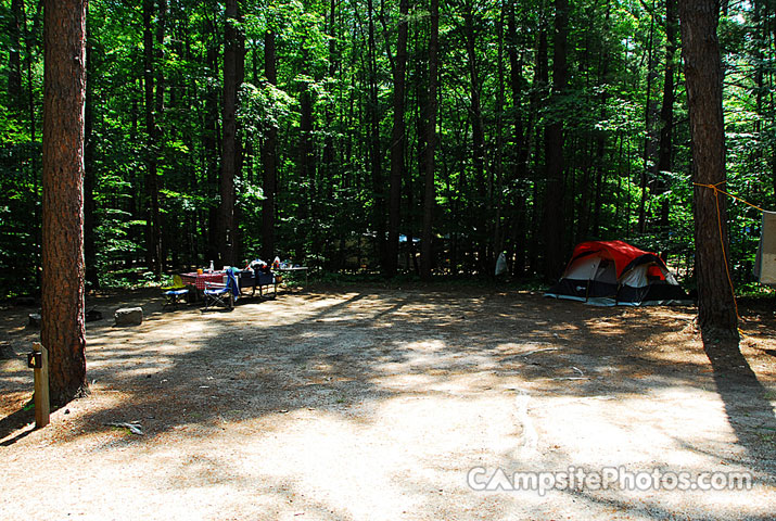 White Lake State Park Campground 1 004