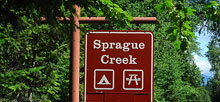 Sprague Creek