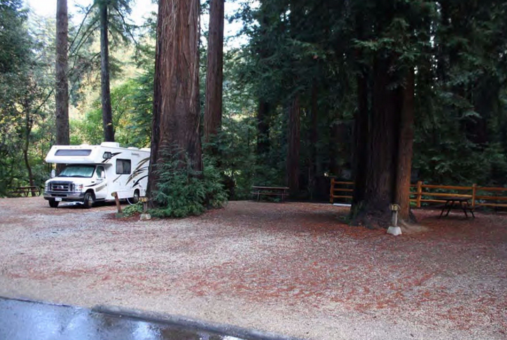 Santa Cruz Redwoods Rv Resort Campsite Photos