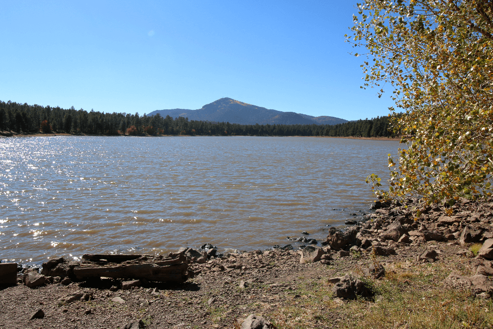 New arizona campgrounds added campsite photos for Fishing in williams az