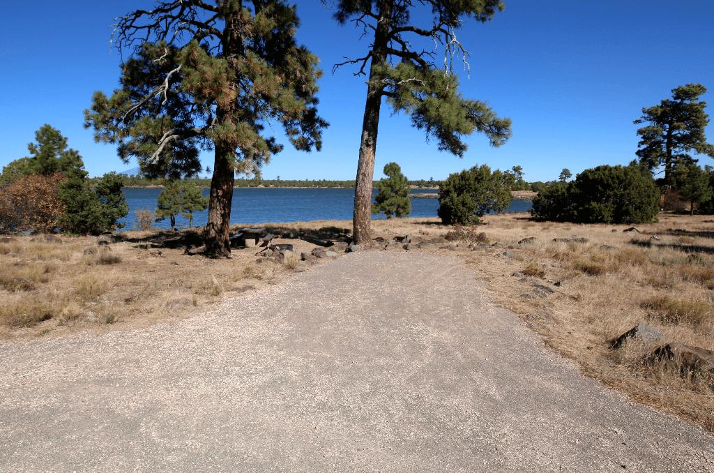 Forked Pine Campsite 18_CampsitePhotos.com