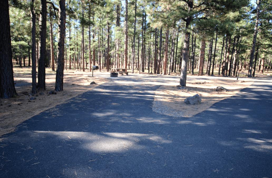 Pine Grove Site 29_CampsitePhotos.com