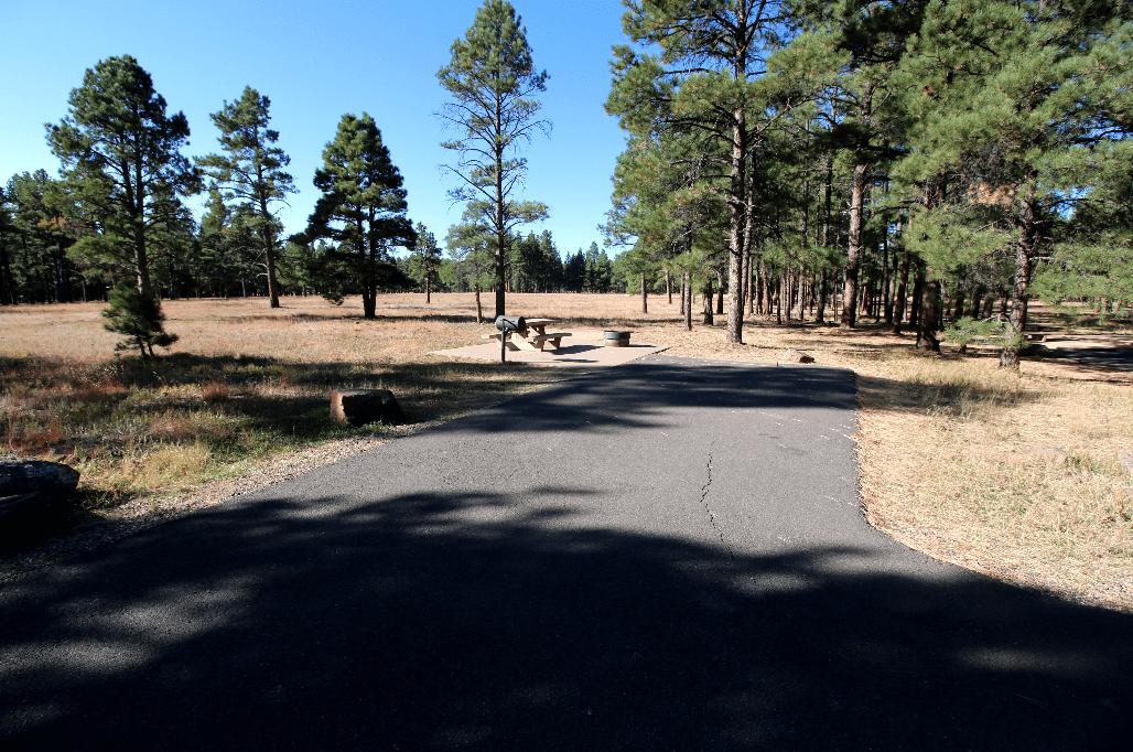 Pine Grove Site 9_CampsitePhotos.com