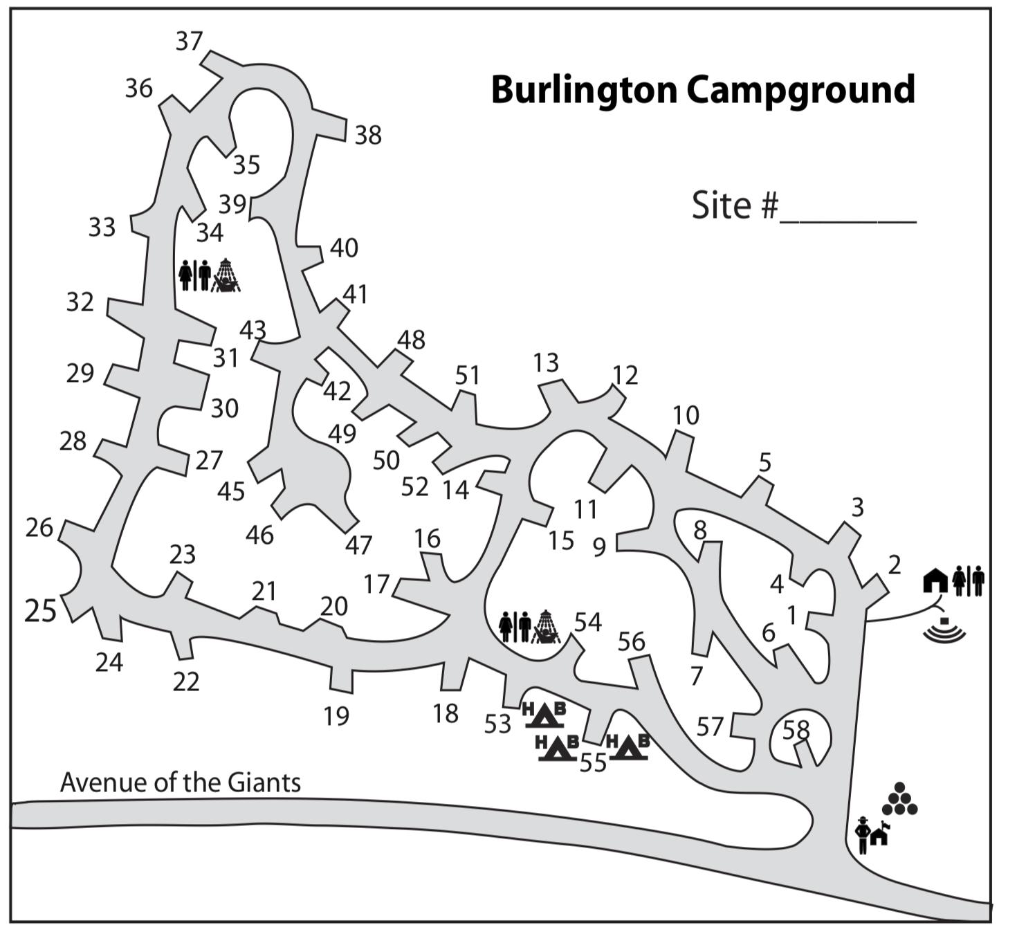Burlington Campsite Photos and Camping Information