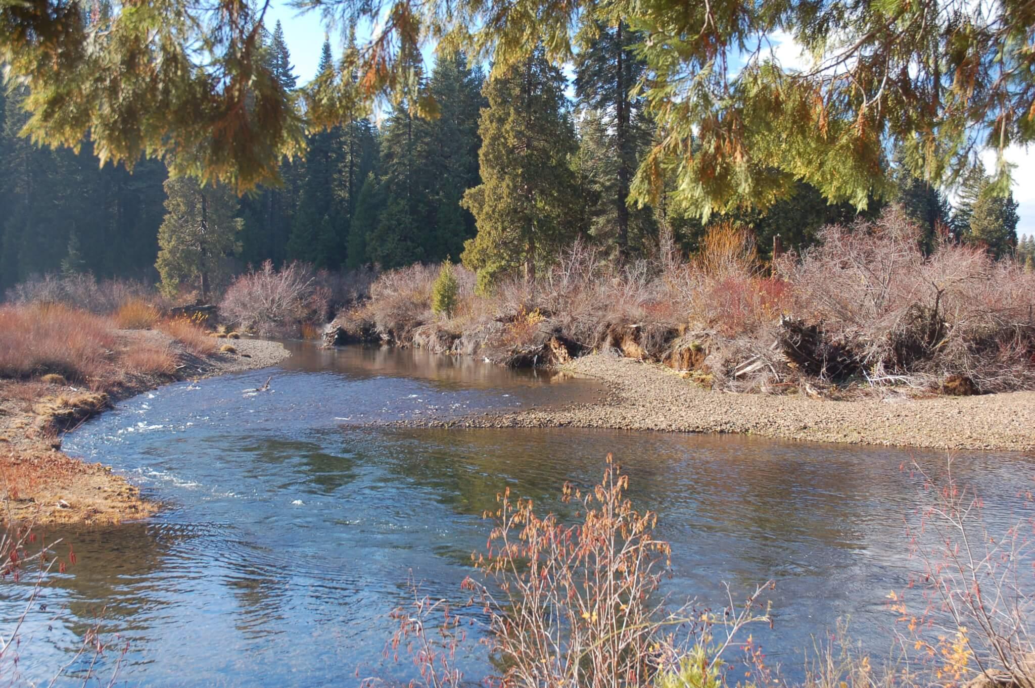 Cattle Camp - Upper McCloud River