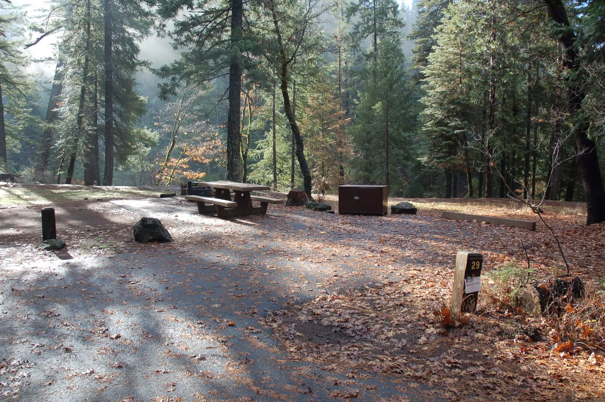 Fowlers Campground - Site 29 - CampsitePhotos.com