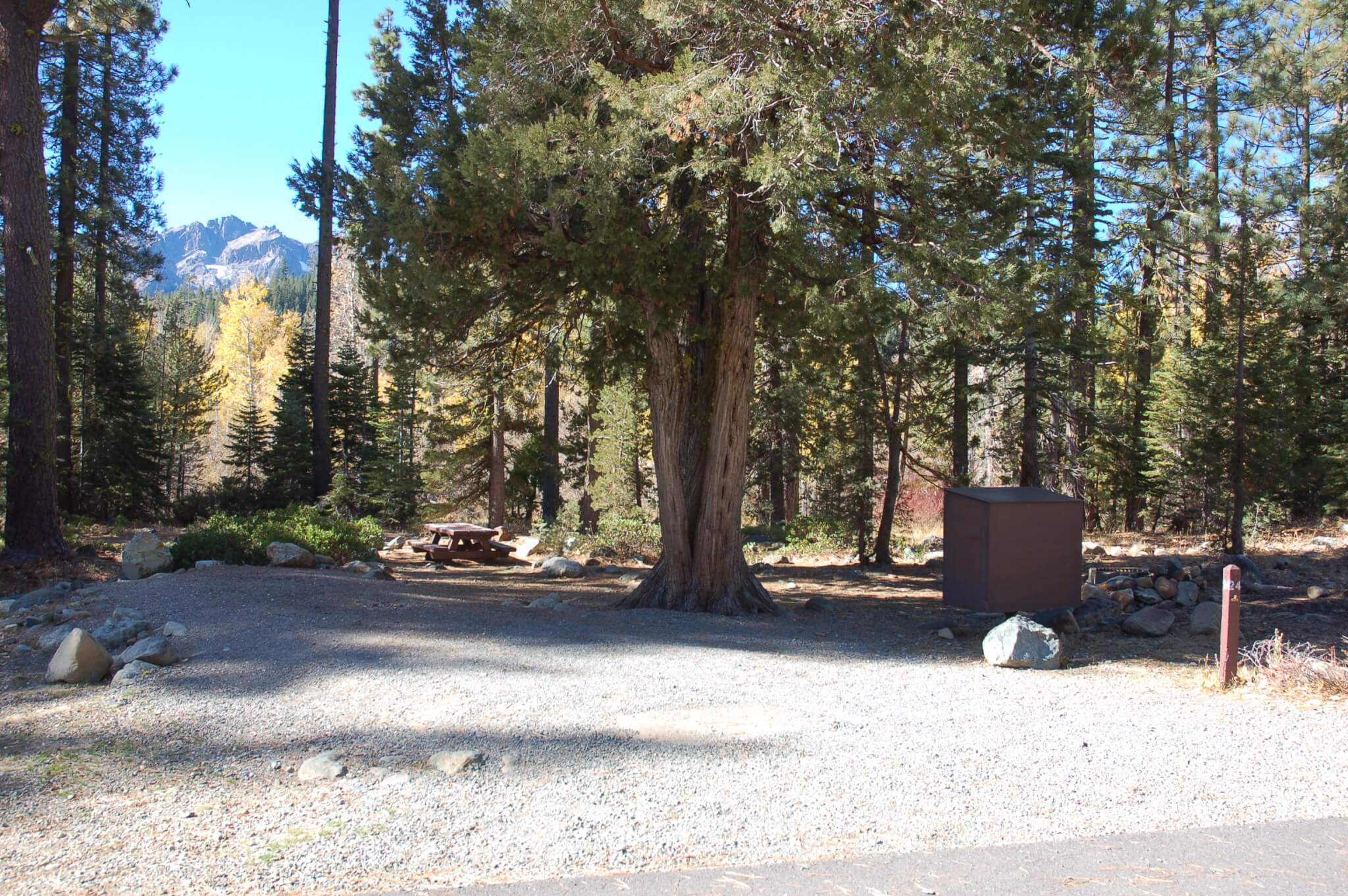 Salmon Creek Campground Site 24