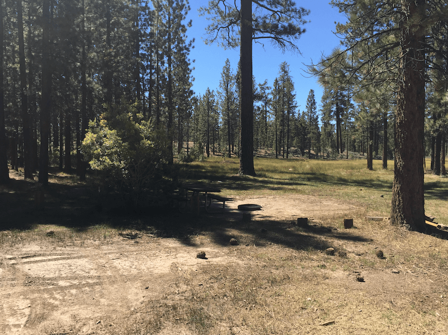 Big Bear Lake Area Campgrounds - Campground Information and