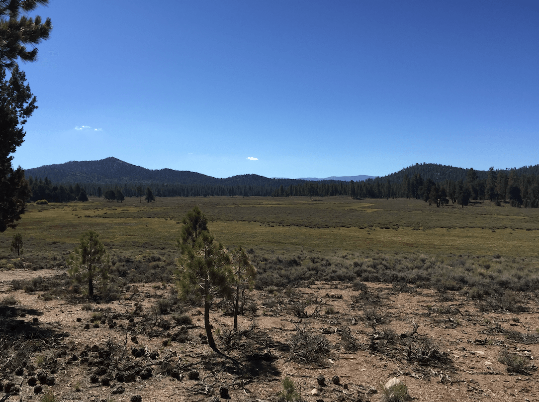 Big Bear Lake Area Campgrounds - Holcomb Valley View