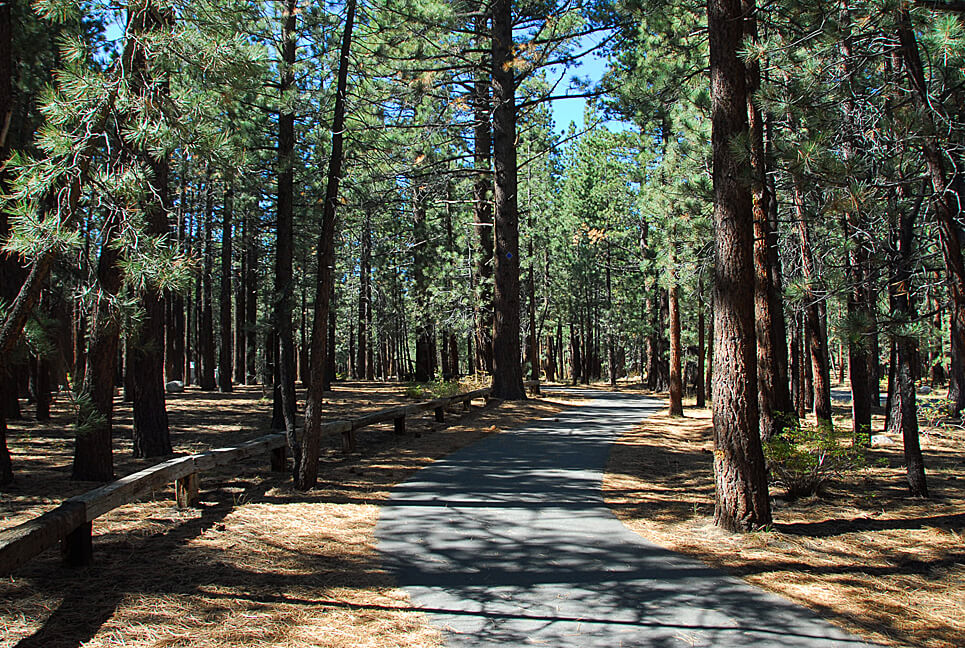 The Best Mammoth Lakes Area Campgrounds New Shady Rest Bike Trail