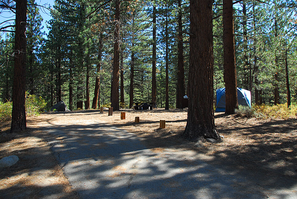 The Best Mammoth Lakes Area Campgrounds New Shady Rest Campsite 148