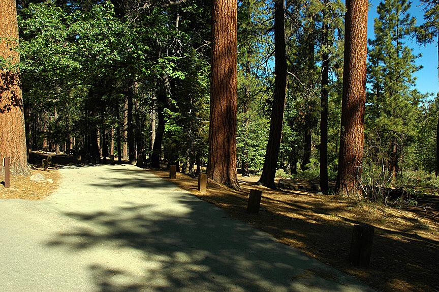 Big Bear Lake Area Campgrounds - Pine Knot 13