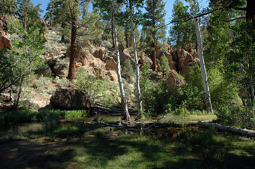 The Best Mammoth Lakes Area Campgrounds Tuff Creek View