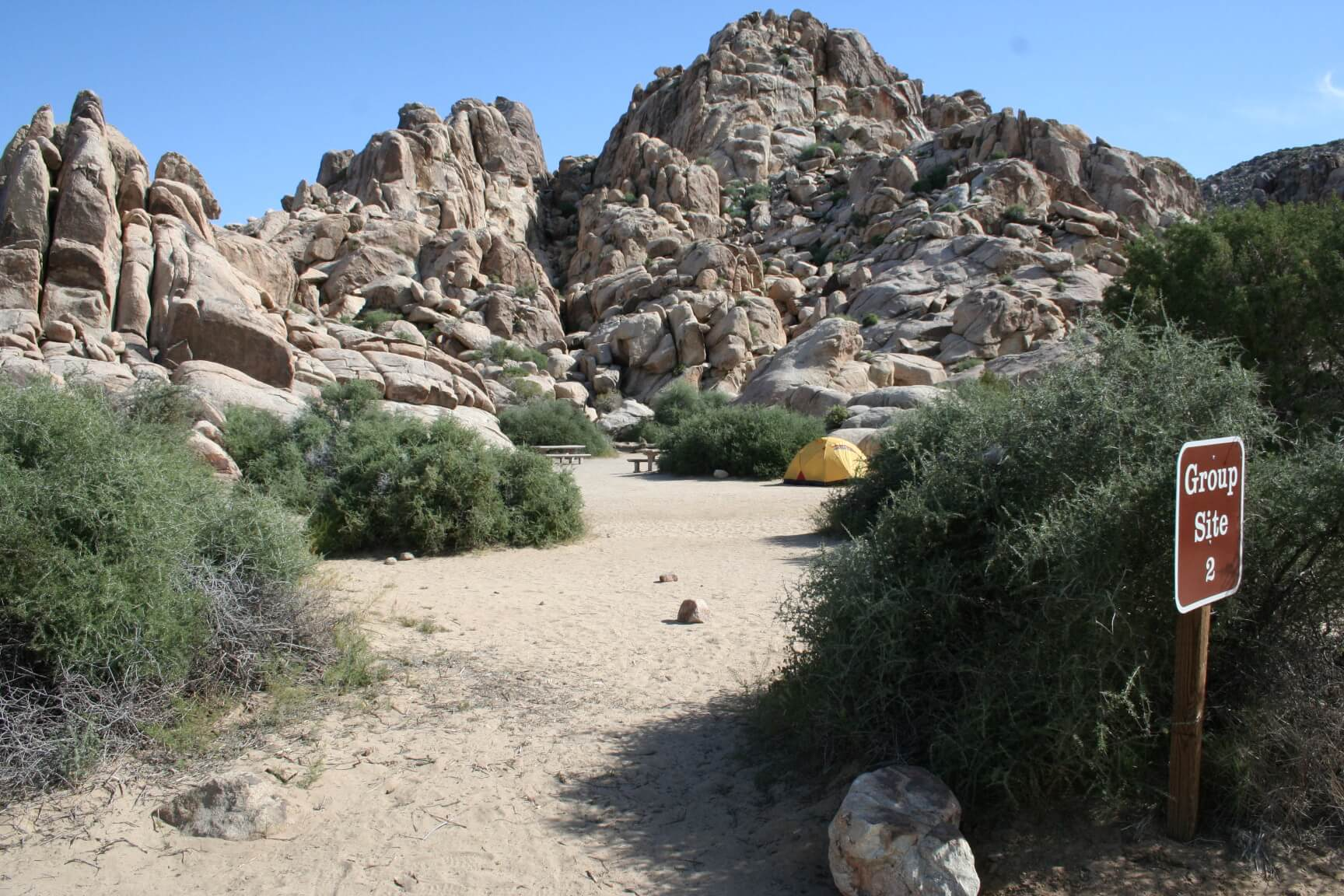 Joshua Tree National Park's Best Campsites Sheep Pass Group #2