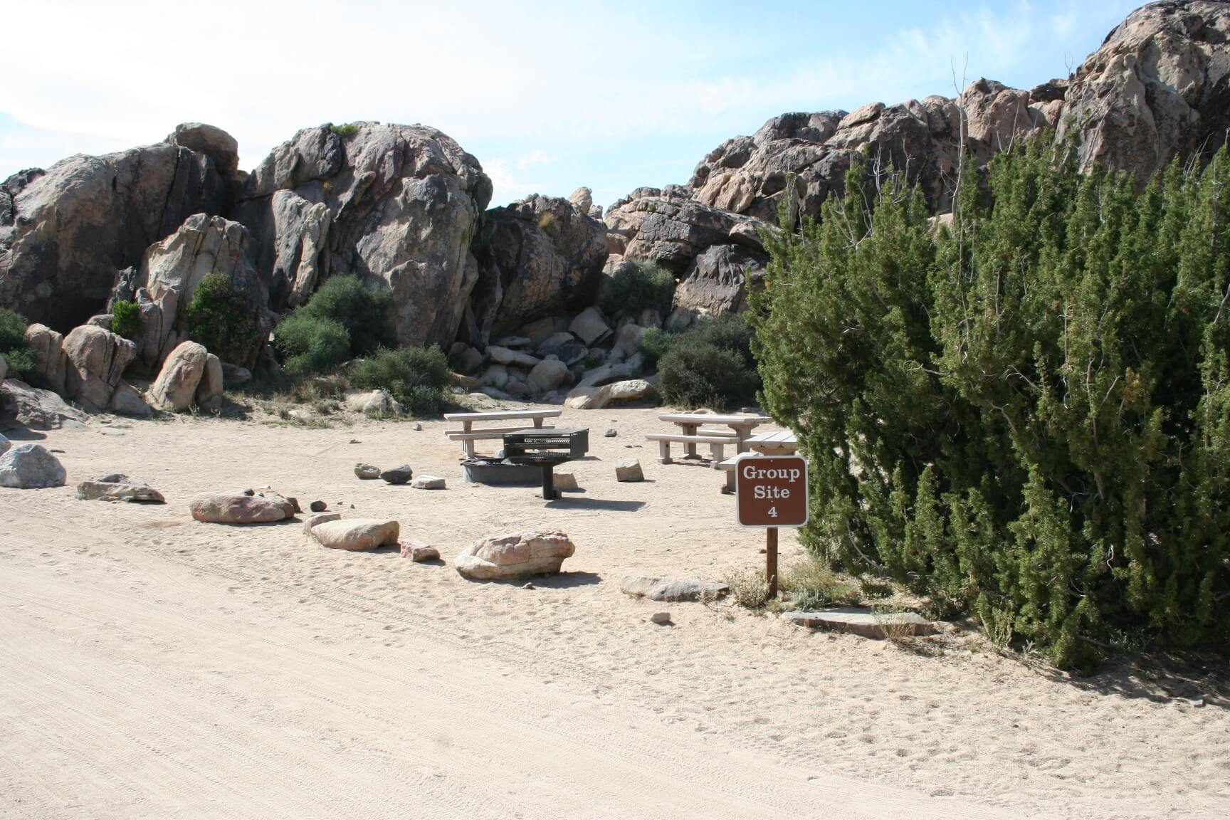 Joshua Tree National Park's Best Campsites Sheep Pass Group #4