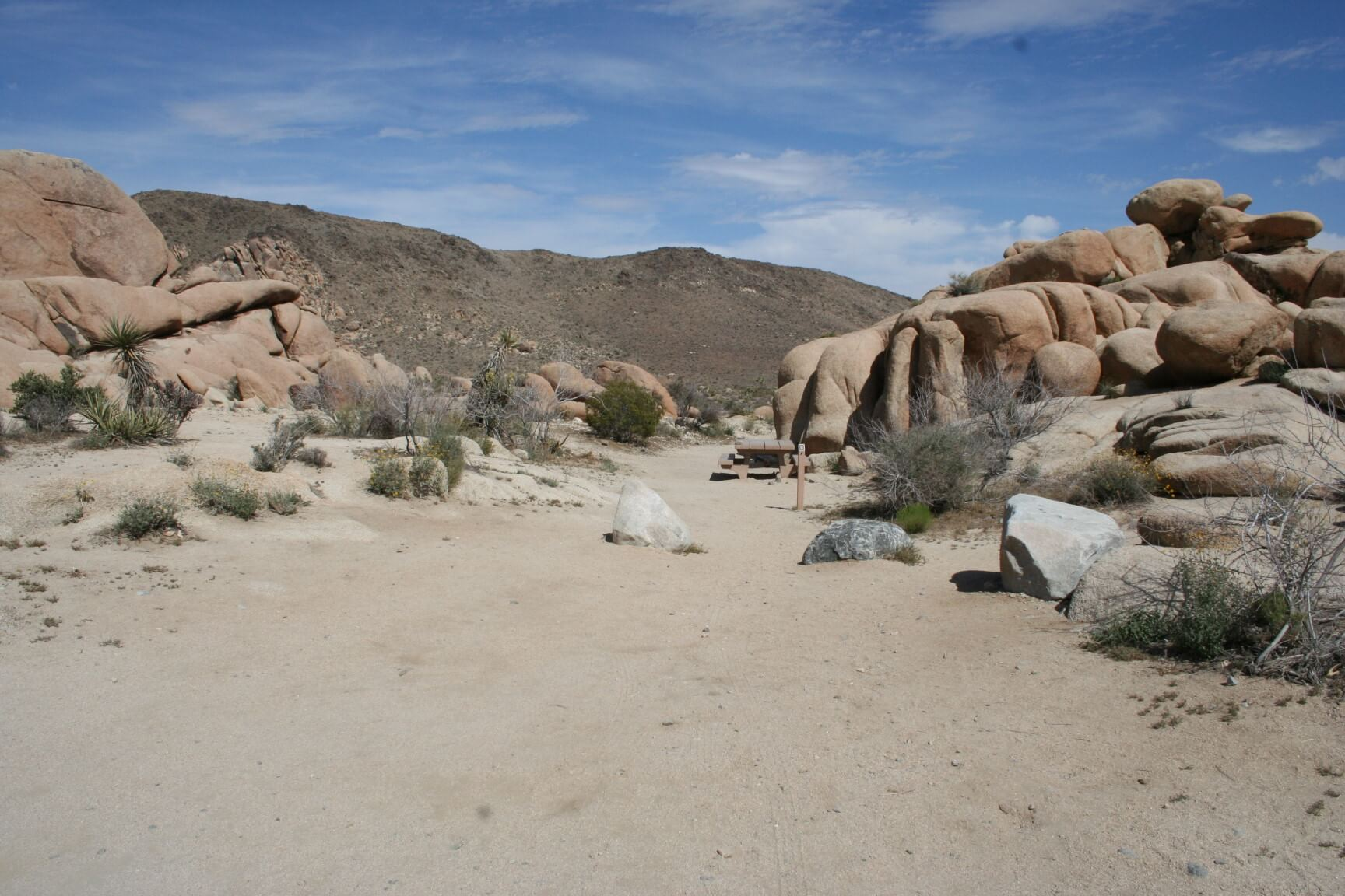 Joshua Tree National Park's Best Campsites White Tank #3