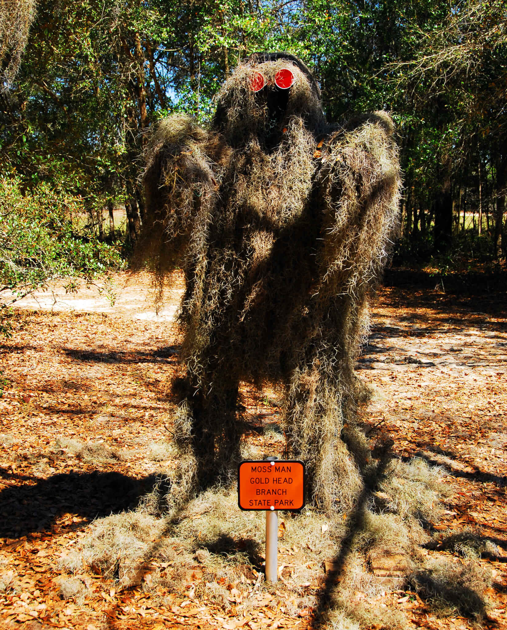 The Legend of Florida's Moss Man