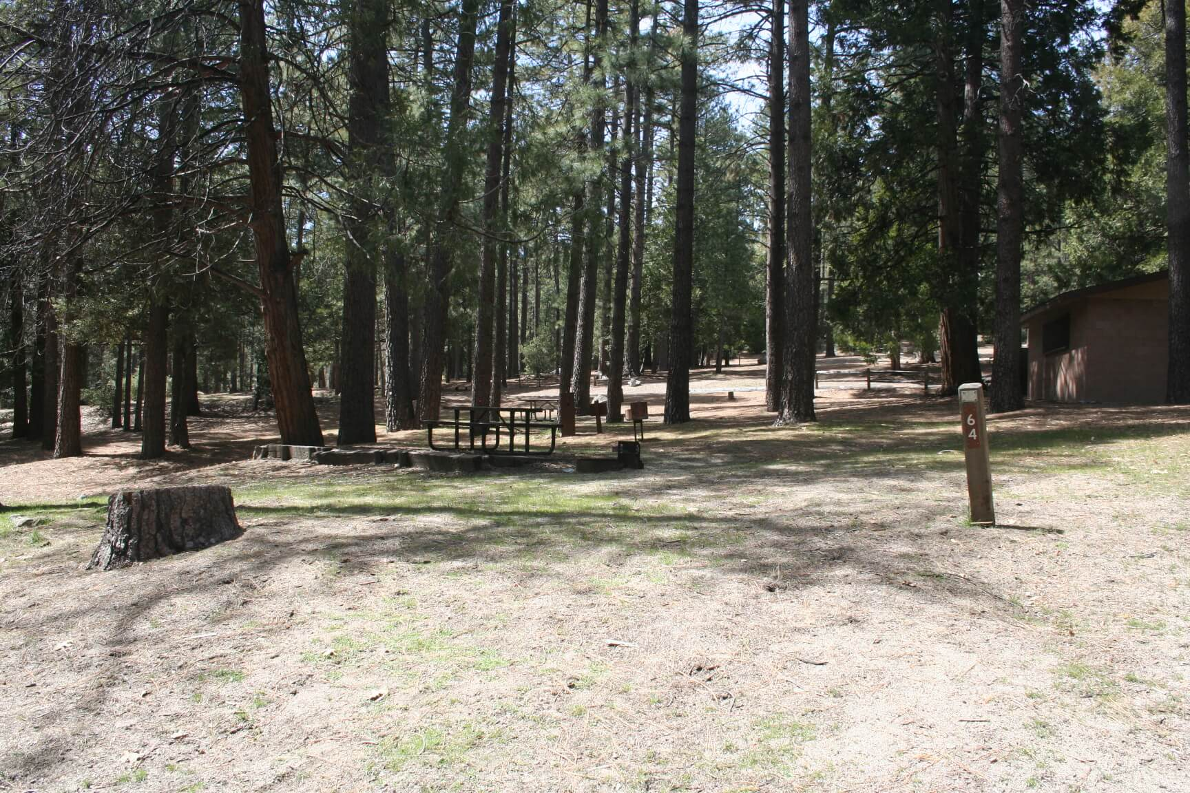 iverside County Parks Campgrounds_Idyllwild Park Campsite 64
