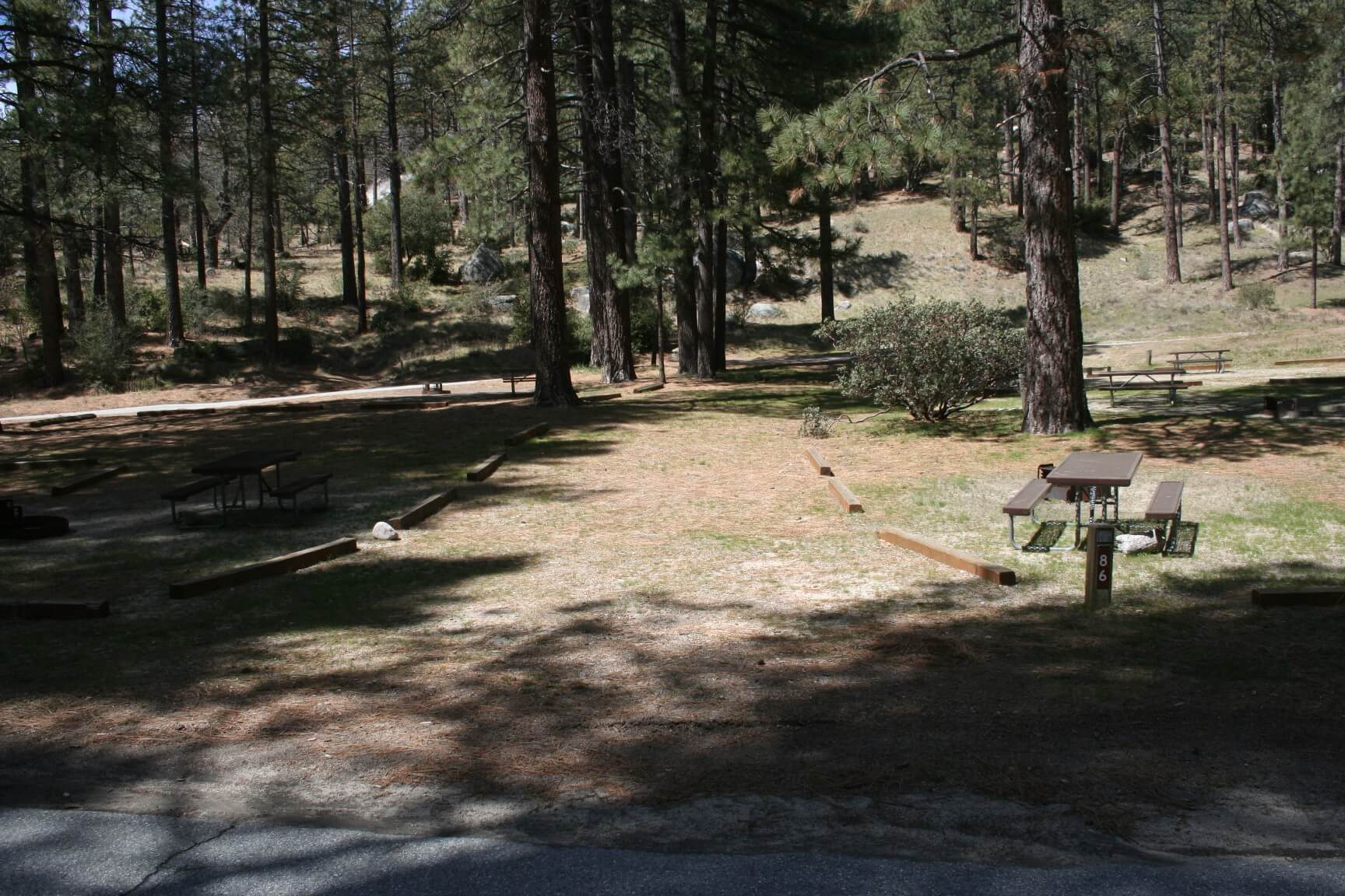 Riverside County Parks Campgrounds_Idyllwild Park Campsite 86