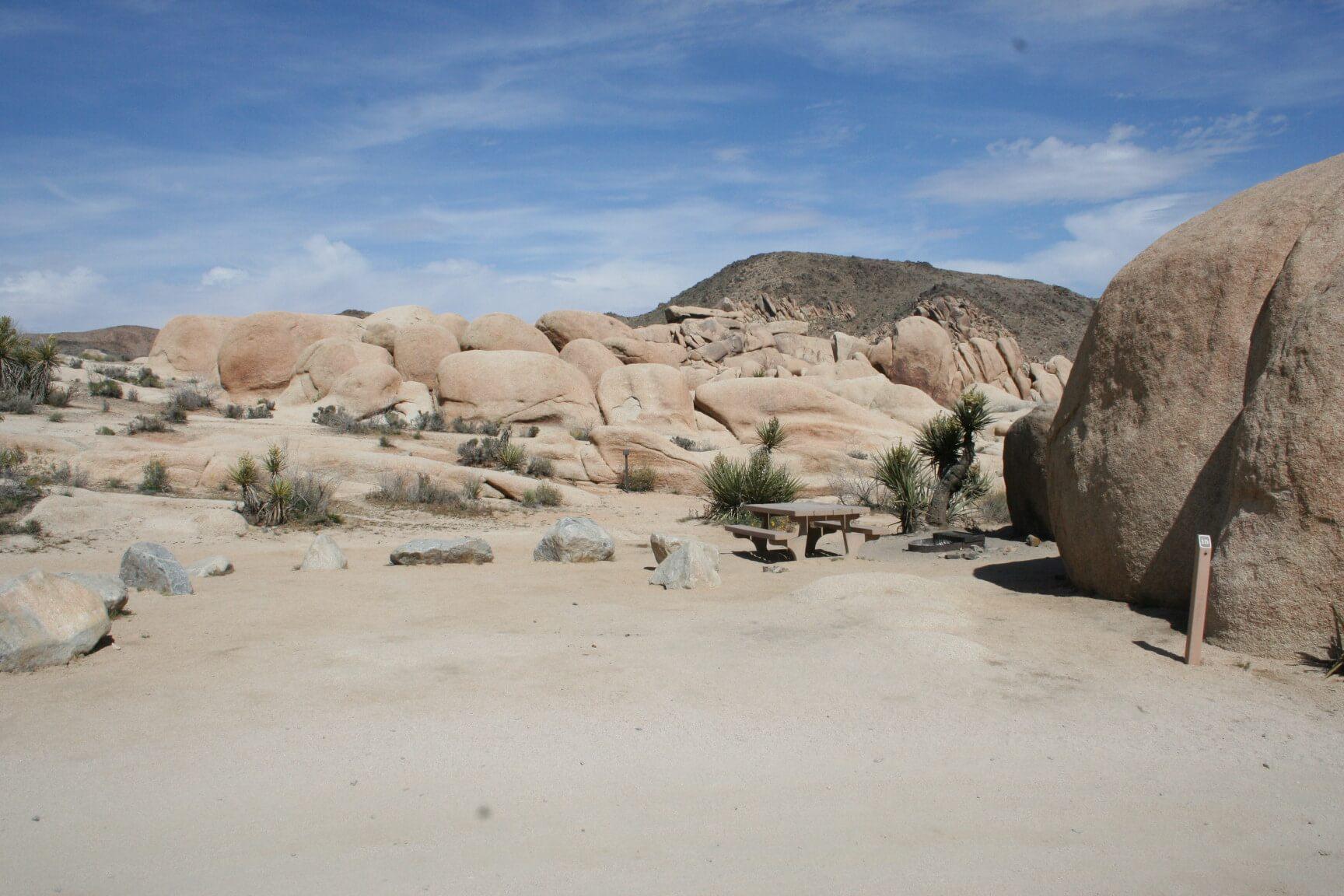 Western US - Fall Camping Guide_Joshua Tree National Park_White Tank_015_CampsitePhotos_CA