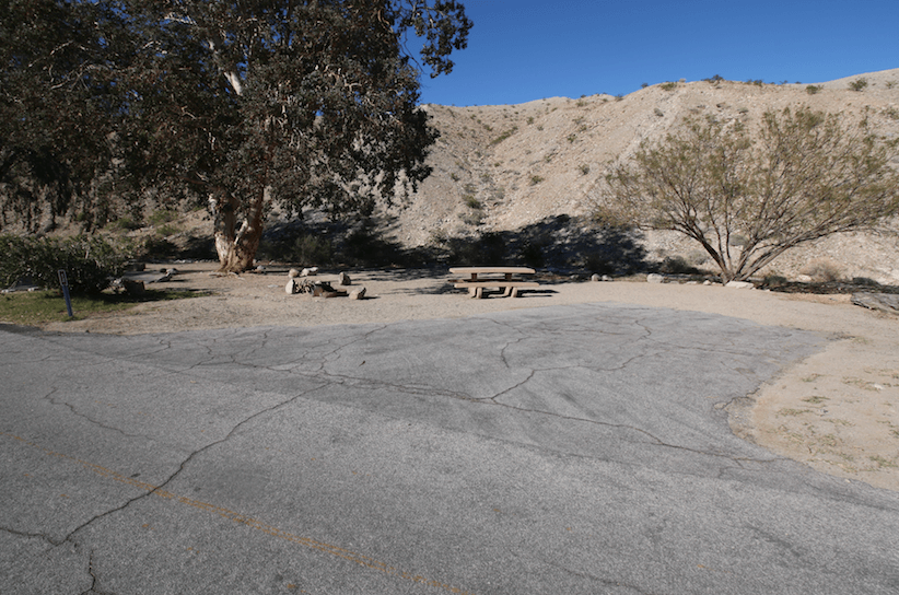 Lake Mead National Recreation Area Campgrounds-Cottonwood Cove Site 12