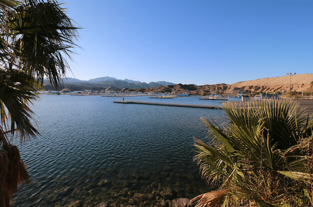 Lake Mead National Recreation Area Campgrounds-Katherine Landing Marina