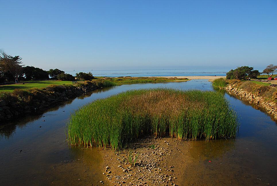 Best Santa Barbara Campgrounds-Carpinteria State Beach Creek