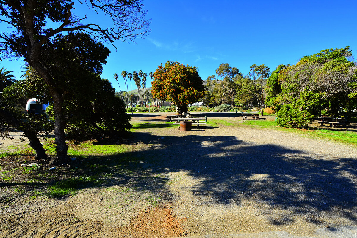 Best Santa Barbara Campgrounds-Refugio-Site 39