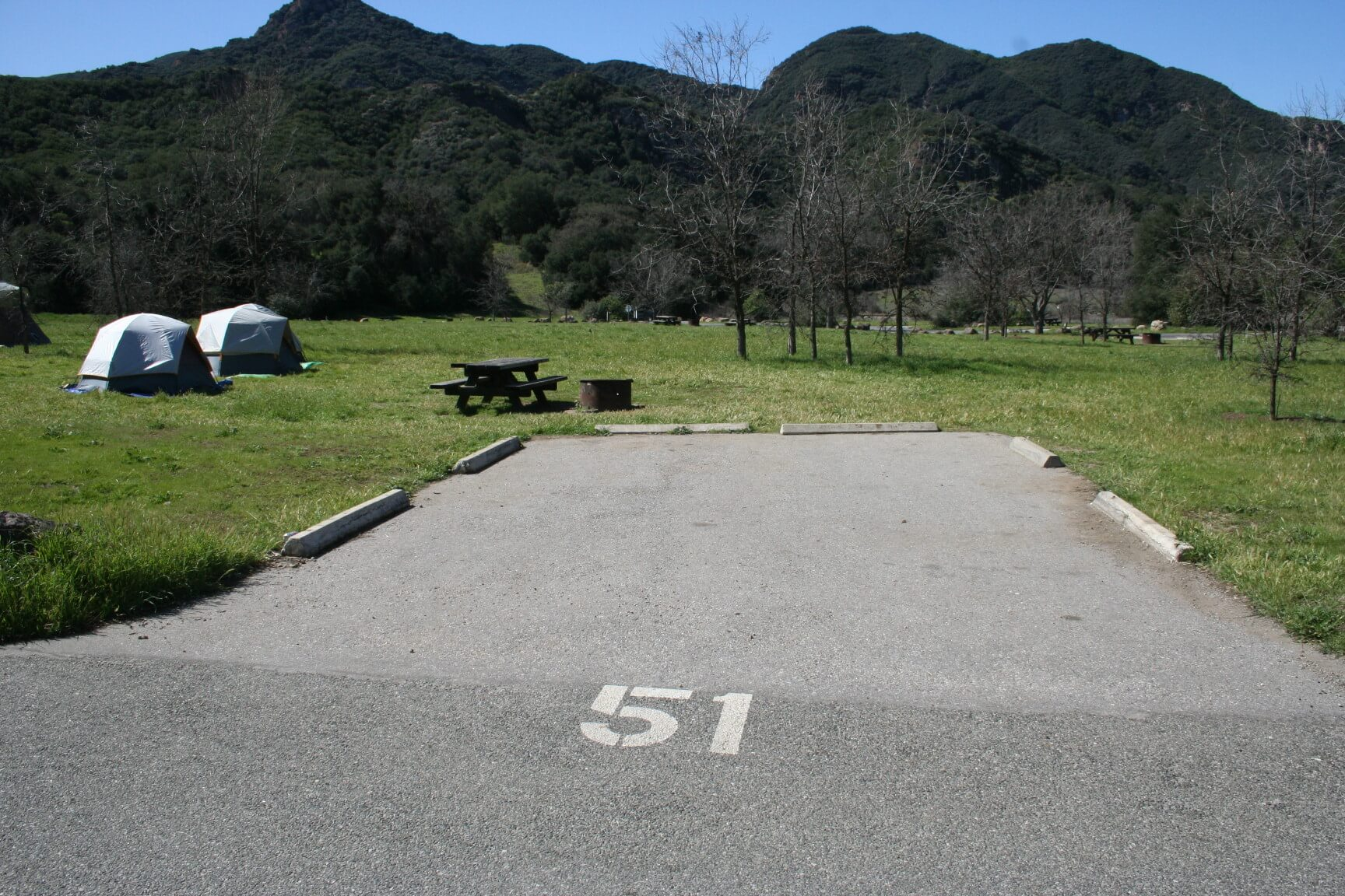 Leo Carrillo & Malibu Creek Campgrounds Are Now Open For Camping - Malibu Creek Site 51 Before Fire