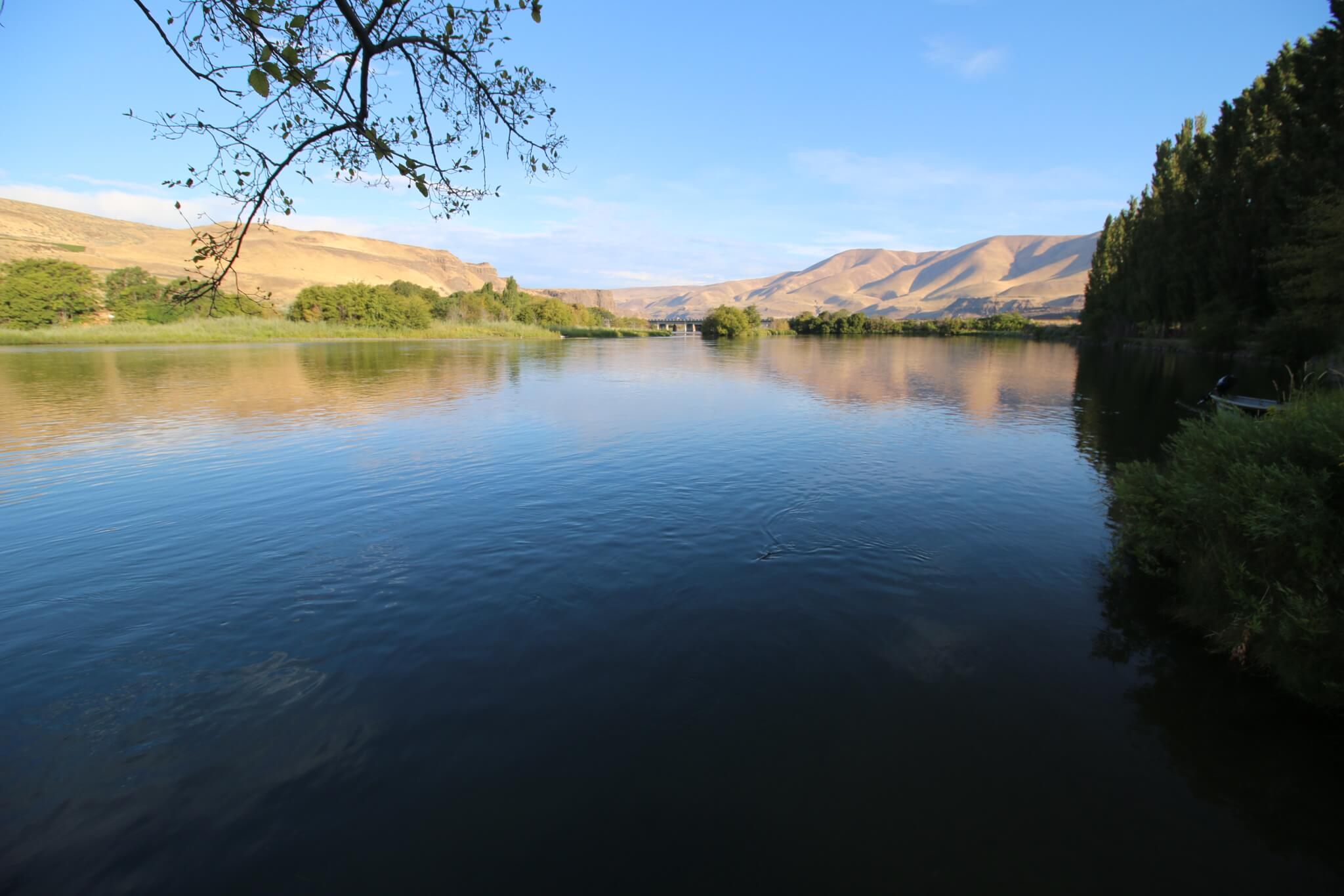 Best Lower Deschutes River Campgrounds - Deschutes River SRA View