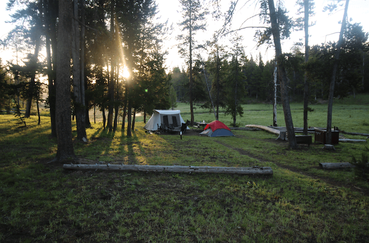 Get A Campsite Availability Notification_Norris Campground