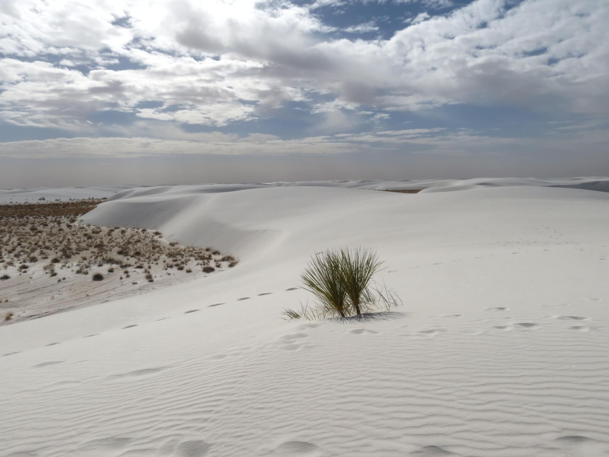 White Sands National Park - Backcountry Camping Loop Trail