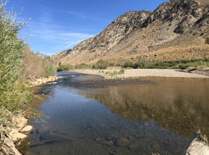 The Best Campgrounds Near Bridgeport-Chris Flat Walker River View