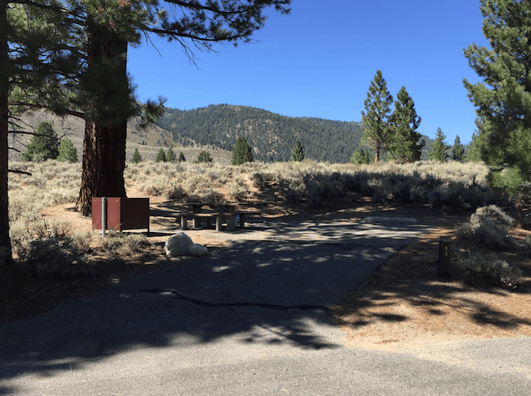 The Best Campgrounds Near Bridgeport-Robinson Creek North_050