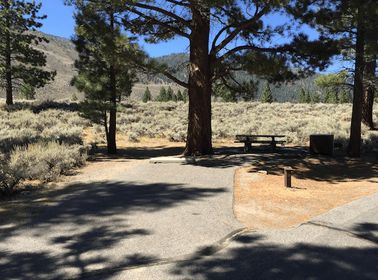 The Best Campgrounds Near Bridgeport-Robinson Creek North_051