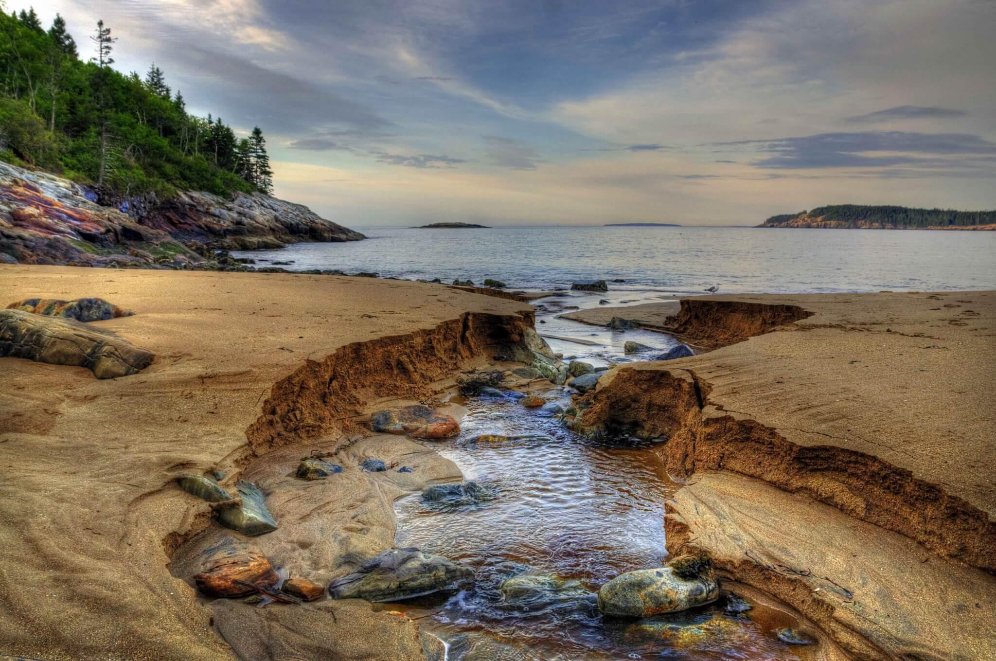 Camping Fever Camping Dreams - Acadia National Park
