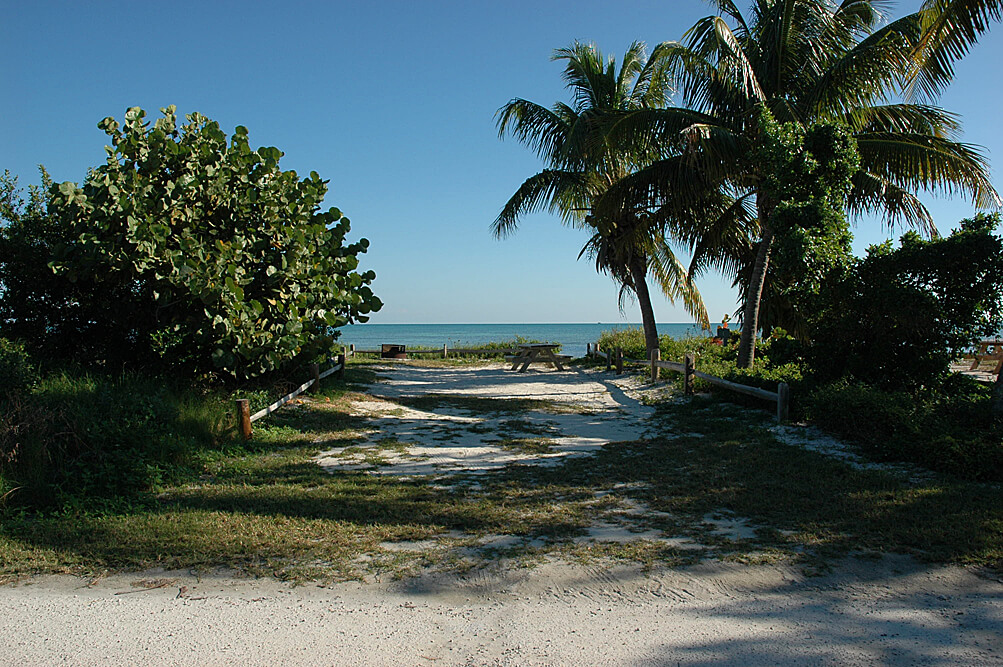 Camping Fever Camping Dreams - Long Key State Park Site 31 FL