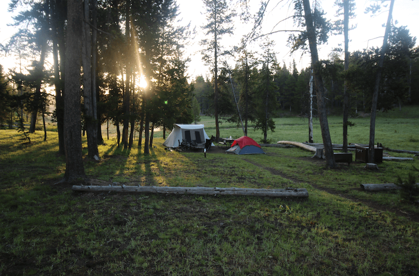 Camping Fever Camping Dreams - Norris Campground - Yellowstone NP