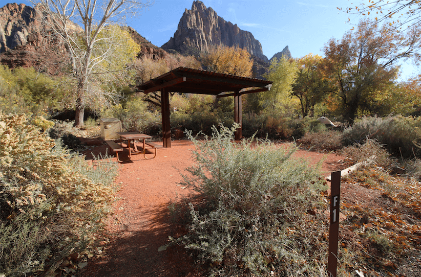 Camping Fever Camping Dreams - Zion National Park Watchman Site F1